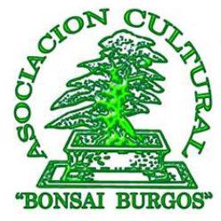 Asociación Cultural Bonsái Burgos